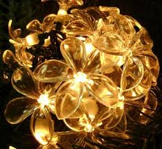 set of 20 plumeria flower clear novelty christmas lights green