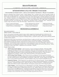 experienced resume examples resume sample controller cfo page 1 google resume template doc business analyst resume sample best business template business resume examples