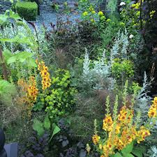 Small Garden Border Ideas How To Plant A Border Like A Pro The Middle Sized Garden