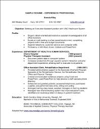 Resume For It Professional 85 It Job Resume Samples It Professional Resume Examples