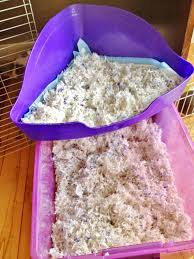 Kaytee Bedding Happily Ever After How To Clean A Midwest Guinea Pig Cage With