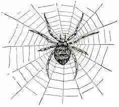 old design shop free digital image spider and spiderweb old