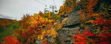 Best Pumpkin Patch Albany Ny by New York Hotels Things To Do Tours Events U0026 More Ny State Travel