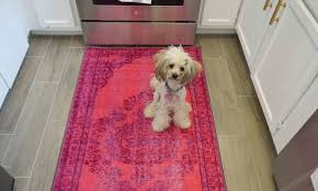 Usa Rugs Coupon Code Kitchen Update The Big Reveal Scout Studiosscout Studios