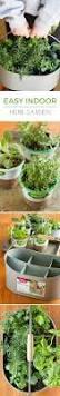 easy indoor herb garden simple 10 minute diy project gardens