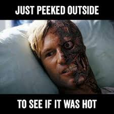 hilarious memes to get a laugh as phoenix roasts in a heat wave