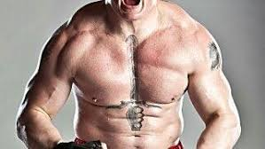 what are some facts about brock lesnar quora