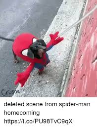 Funny Spiders Memes Of 2017 - 25 best memes about spider man homecoming spider man