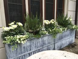 Topiary Planters - tips get a fresh look potted with rosemary topiary u2014 emdca org