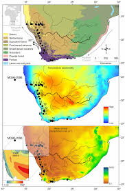 World Map Biomes by A Map Of Biomes Of Southern Africa Based On Mucina Et Al