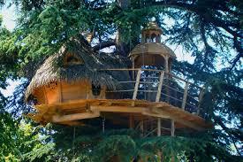 chambre dans un arbre dormir dans une cabane dans les arbres sur un arbre perché