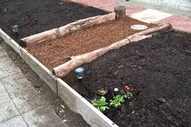 What Type Of Wood Is Best For Raised Garden Beds How To Build Raised Garden Beds If You U0027re Cheap And Lazy