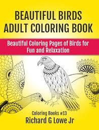 beautiful birds coloring book the writing king