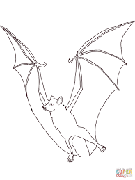megabat flying fox coloring page free printable coloring pages