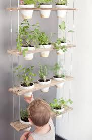 vertical garden diy indoor gardening ideas
