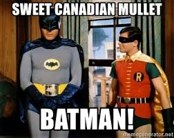 Batman And Robin Meme Generator - sweet canadian mullet batman batman robin meme generator