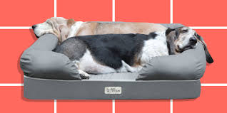Burrowing Dog Bed 11 Best Pet Beds For Dogs And Cats Chic And Comfy Pet Beds They