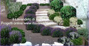 immagini di giardini fioriti progetti giardini gratis progetti giardini privati