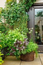 Galvanized Containers For Gardening Lush Herb Gardens Southern Living