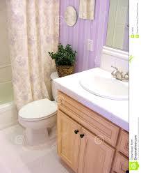 lavender bathroom ideas accessories breathtaking lavender bath painted bathrooms