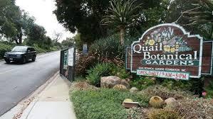 Quail Botanical Gardens Free Tuesday Encinitas Quail Botanical Gardens To Change Its Name The San