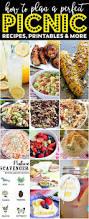 Summer Entertaining Menu - best 25 picnic menu ideas on pinterest meat platter cheese