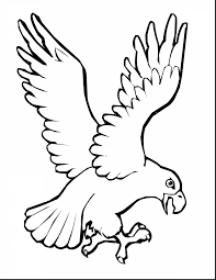 superb bird wings coloring bird coloring pages
