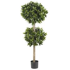 Flower Topiary 57 Inch Sweet Bay Double Ball Topiary Tree Potted 5311