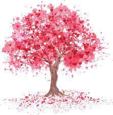 royalty free cherry tree clip vector images illustrations