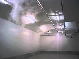 humidifier chambre humidification d une chambre froide de conservation des fraises