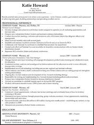 Chronological Resume Templates Different Resume Format Some Resume Samples Cover Letter Best