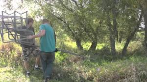 how to set up a ladder tree stand for deer