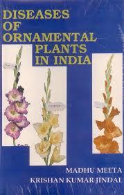 diseases of ornamental plants in india 9788170351290 jindal