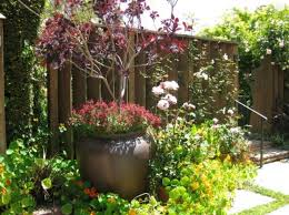 Small Garden Bed Design Ideas Small Garden Bed Ideas Webzine Co