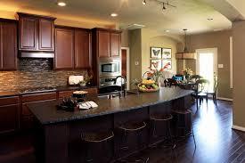 kitchen ideas hgtv hgtv kitchen ideas coryc me