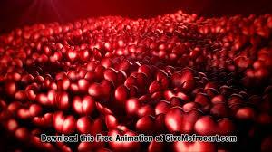 free valentines day animation hearts youtube