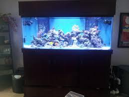 bedroom fish tank bedroom beautiful home design fancy to home