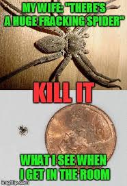 Huge Spider Memes Image Memes - spider imgflip