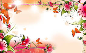flowers and butterflies on the wall spring hd wallpaper