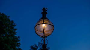 who to call when street lights are out there are street lights powered by dog matter of trust