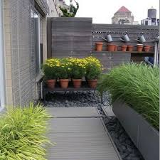 terrace and garden designs modern rooftop gardening potted plants