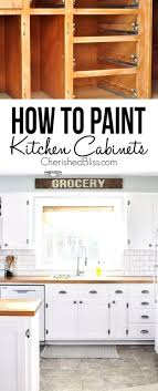 Remodeling Kitchen Cabinets On A Budget Fanciful Diy Budget Kitchen Projects Ideas Kitchen Paint Makeover