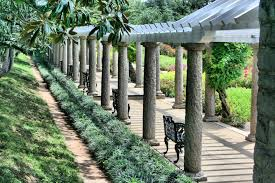free images tree grass fence lawn sidewalk flower seating