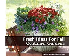 the 25 best fall container gardening ideas on pinterest fall