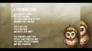 Old Halloween Poems Cute Owl Poems And Drawings Youtube
