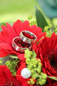 wedding flowers groom free images woman petal green symbol