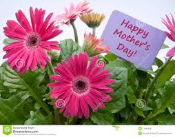 happy mothers day with flowers royalty free stock images image