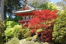 San Francisco Flower Garden by Benefits Of Living In San Francisco U2013 Rentsfnow