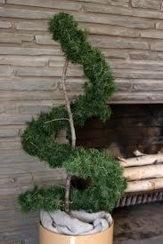 Front Porch Topiary Learn How To Make An Evergreen Spiral Topiary How Tos Diy