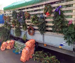 real christmas trees for sale perth christmas lights decoration